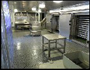 Fish processing area with blast freezers